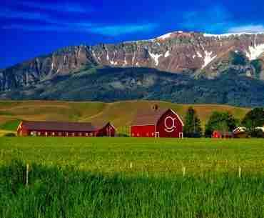 Organic Food - The History of Pesticide Use - Barn