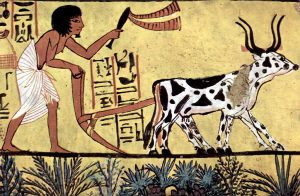 Organic Food - the History of Pesticides - Painting of Engytian Agriculture